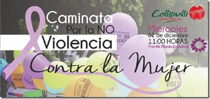 Caminata No violencia Contra la Mujer