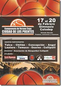 afiche a3 COLLIPULLI
