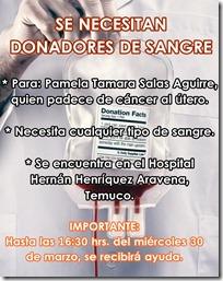 AFICHE donación de sangre en temuco