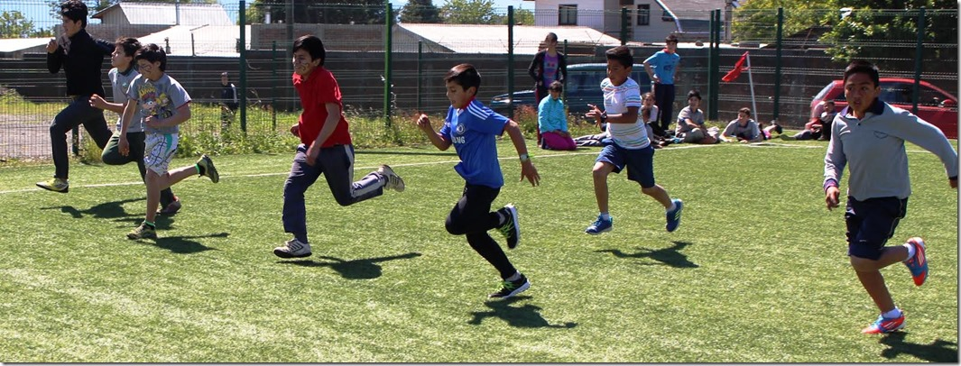 Olimpíadas rurales 2016 (2)