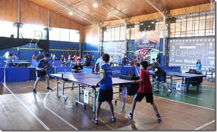 FOTO open tenis mesa 3
