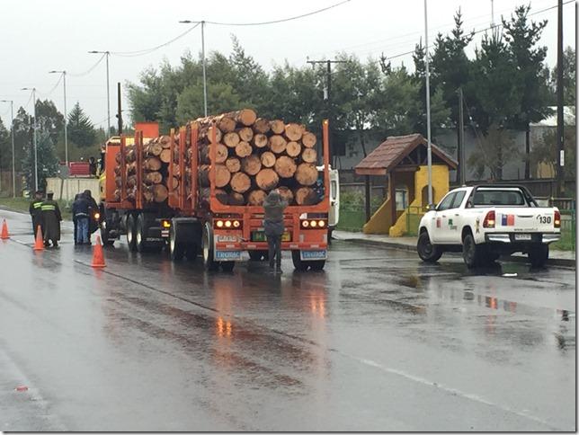 camiones con trozos