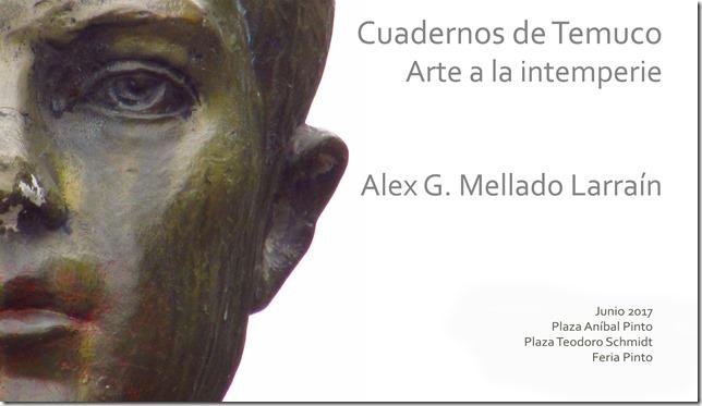 Cuadernos de Temuco Alex Mellado (3)