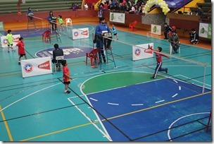 badminton 2 edi