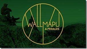 WAP-logo