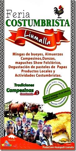 Feria Costumbrista de Liumalla (1)