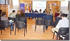 Comisión de Salud del Gobierno Regional de La Araucanía sesiona en Villarrica (2)