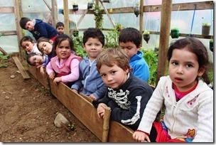 Educación pre escolar inicia sus actividades (1)