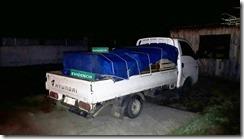 camion pescados