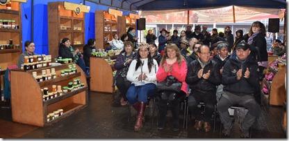 Feria de los Aderezos y Mermeladas en Villarrica