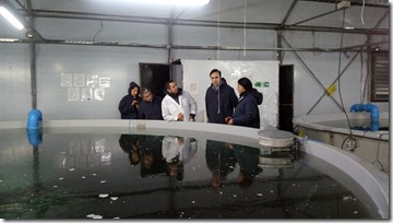 piscicultura (1)