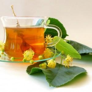 شاي نبات اللبلاب