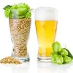 فوائد شراب الشعير (ماء الشعير)