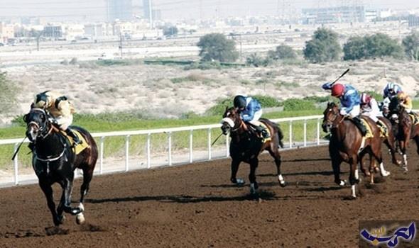 الخيول المشاركة في السباق السادس في ولاية بركاء