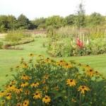 ostatni-3-zahrada-na-kraji-lesa-velka
