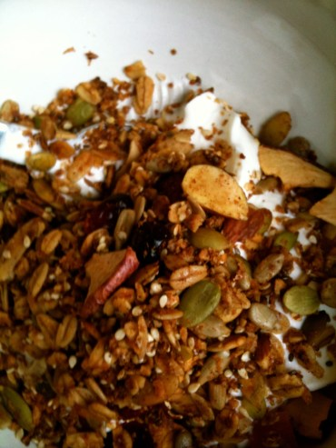 This is a photo of granola on yogurt. Delicious!