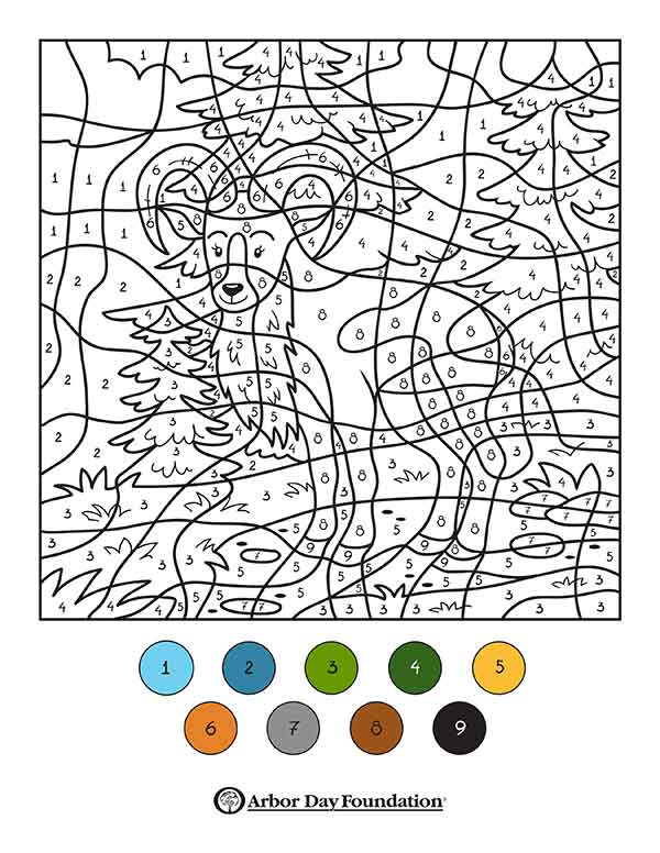 Coloring Pages at arborday.org