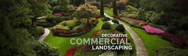 landscaping company waterford