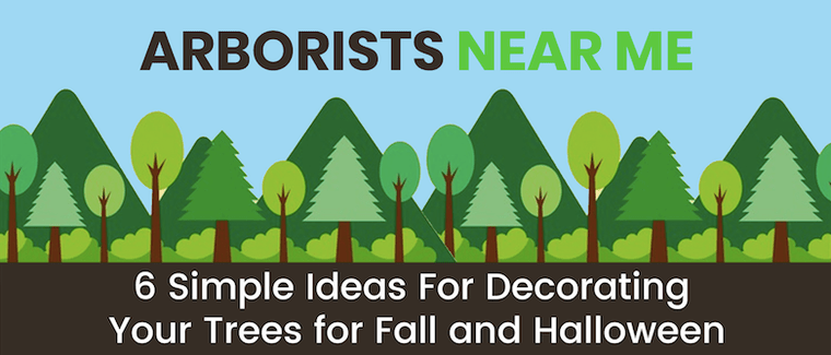 6 Simple Ideas For Decorating Your Trees For Fall And Halloween