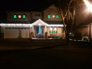 2011 Holiday Light - 3rd Place