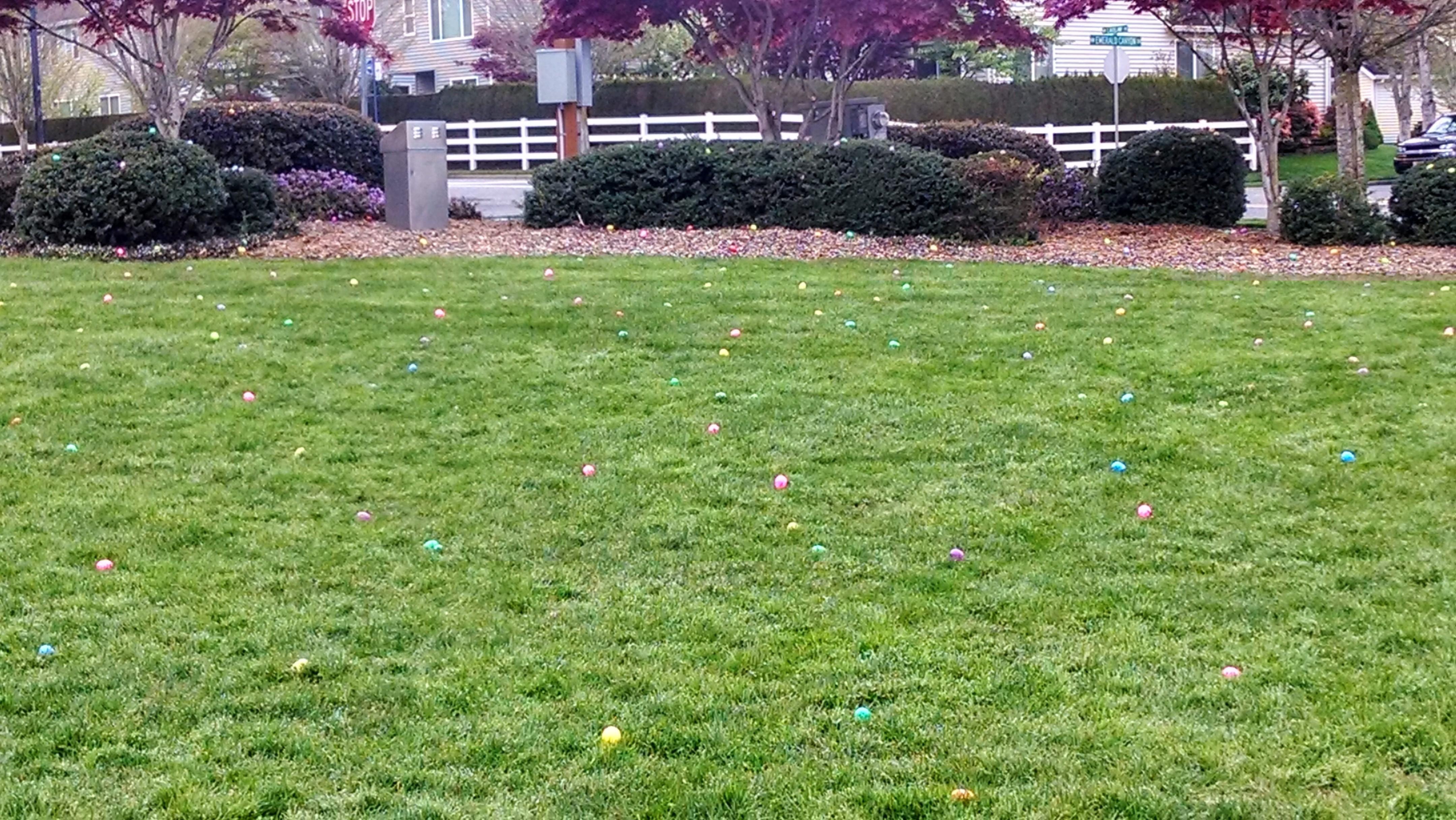 Easter-2014 (2)