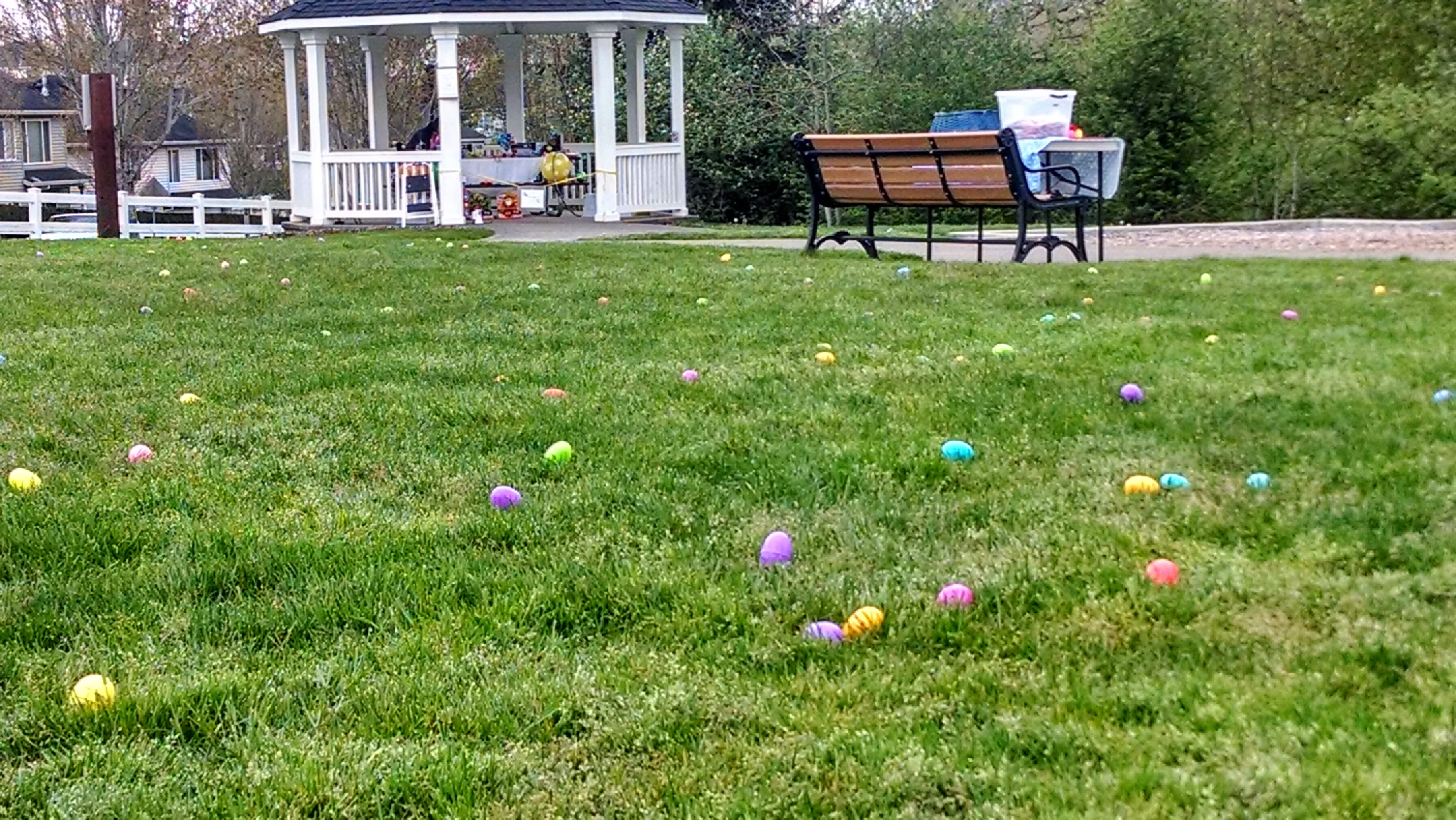 Easter-2014 (3)