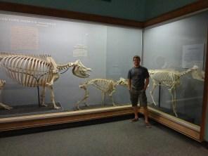 Smithsonian National History Museum, Washington DC, arboursabroad