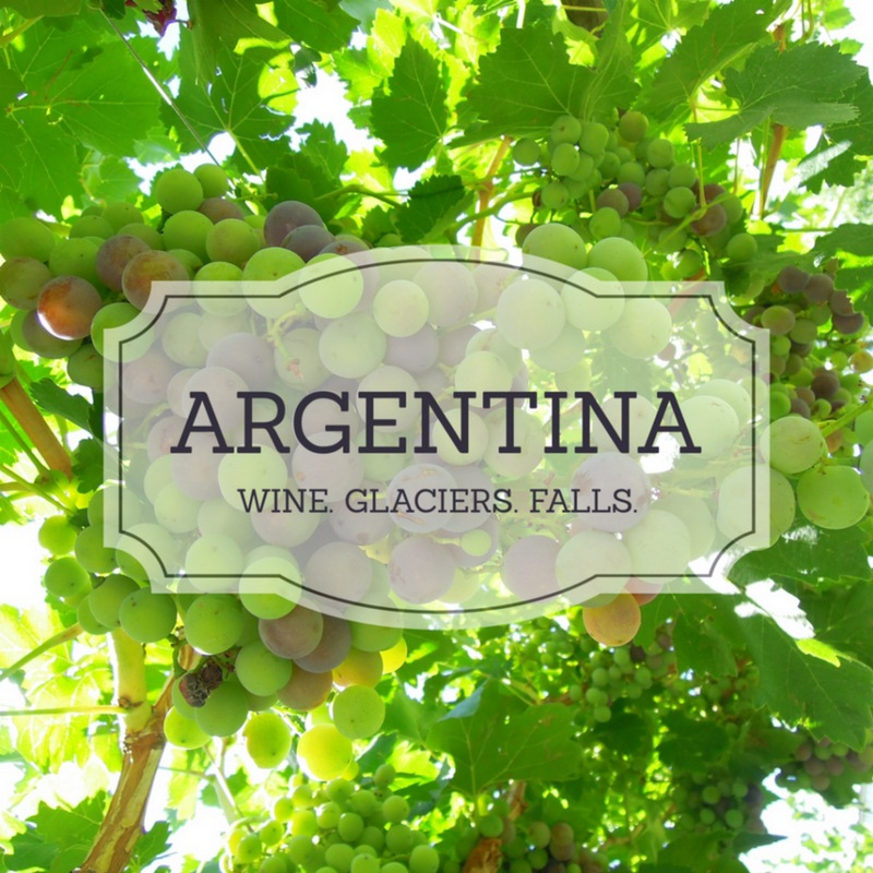 argentina, wine, grapes, travel tips, south america