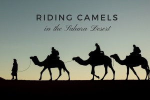 Riding Camels in Morocco   Our Night in the Sahara Desert