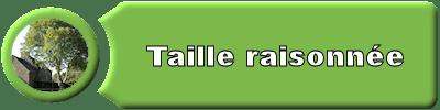 puce_taille_raisonnee