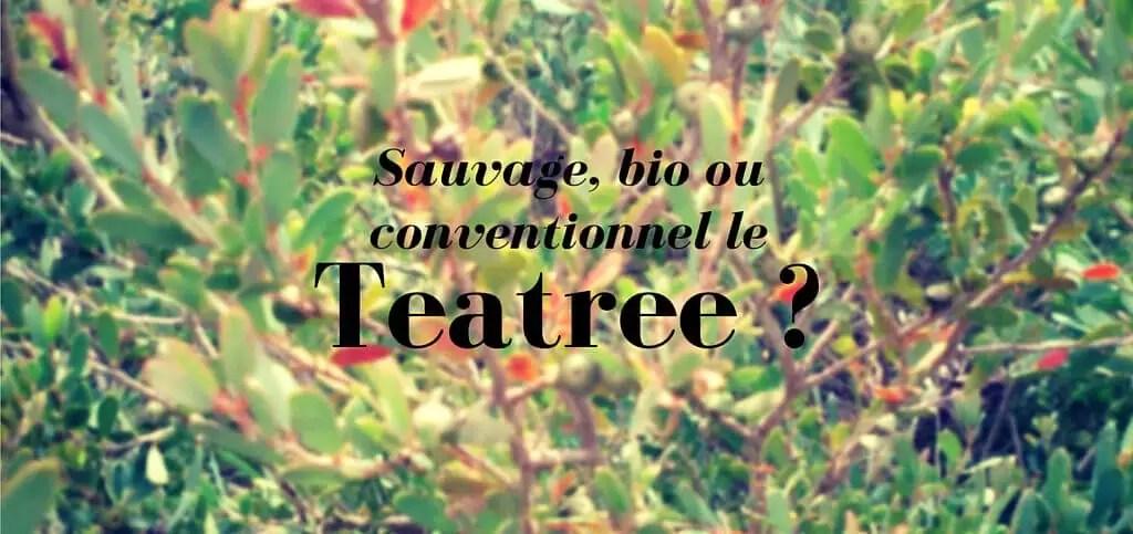 teatree-sauvage-bio-conventionnel