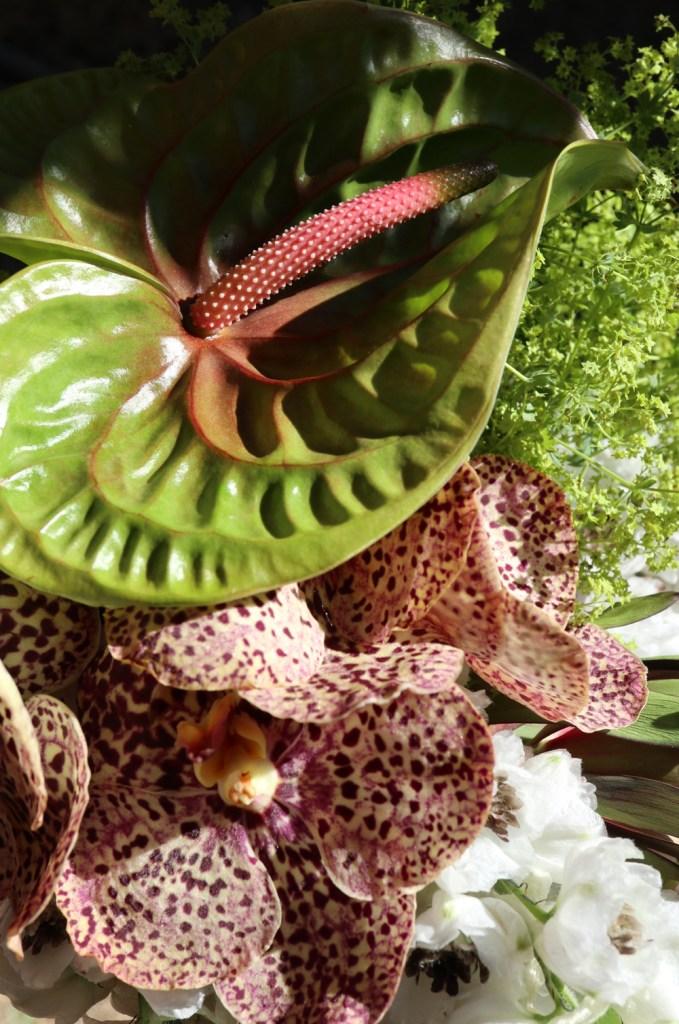 arcflora, floral design, los angeles, orchids, exotics, anthurium