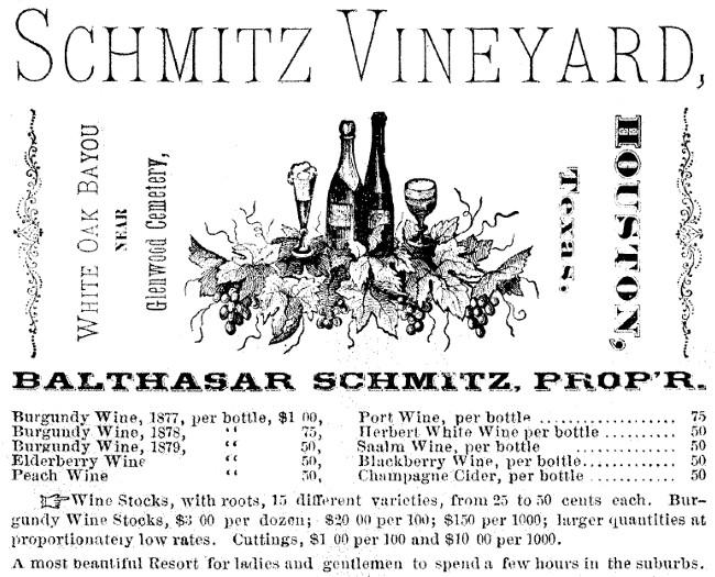 Schmitz Vineyard