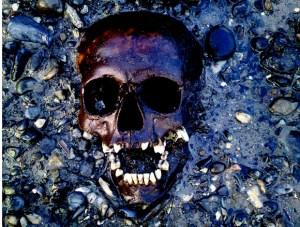 embedded-skull.jpg