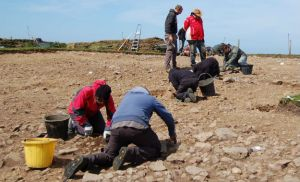 Meillionydd excavation 2015