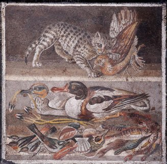 Roman imagery such as this 1st-century mosaic from Pompeii show cats living alongside humans. (Image: Marie-Lan Nguyen).