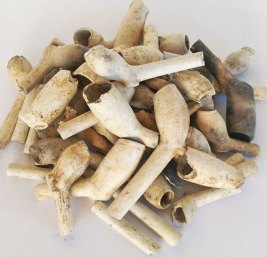 Clay pipes (photo: MOLA)