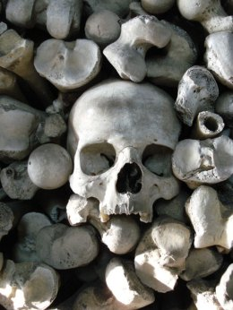 hythe-skull-among-the-stack