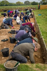 LISS ARCHAEOLOGY - Colemore Project
