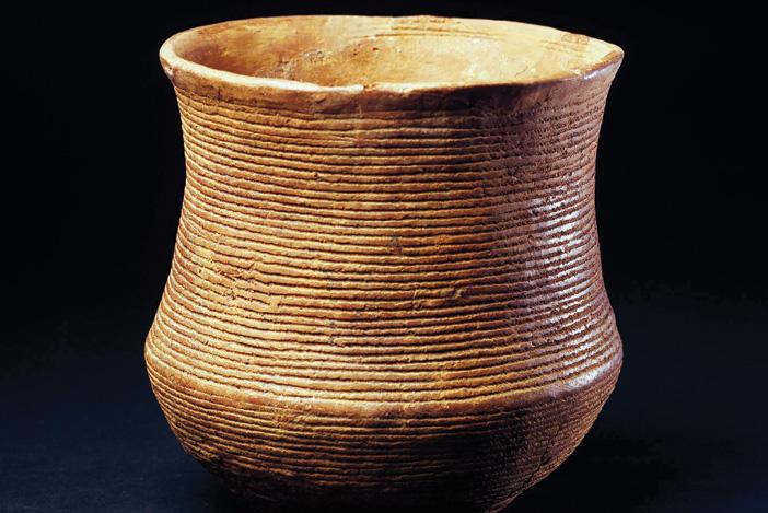 Beaker from Bathgate West Lothian  CREDIT  National Museums Scotland jpg?fit=702,469&ssl=1.'