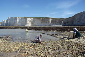 CITiZAN-Volunteers-record-the-wreck-of-the-Coonatto-at-National-Trust's-Birling-Gap-(c)-CITiZAN