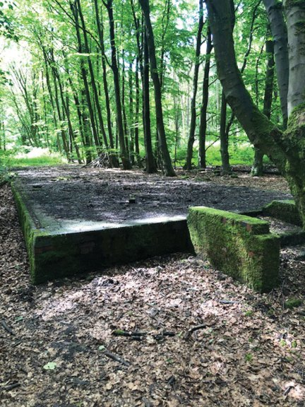 Preserving a POW camp in Yorkshire