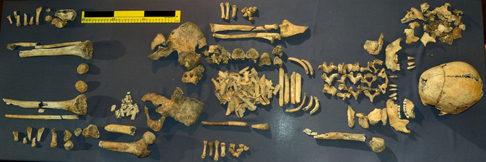 The skeleton of the Iron Age woman buried with an infant at her feet in High Pasture cave