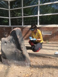 A full survey and assessment of the stones was undertaken before they were removed from the ground