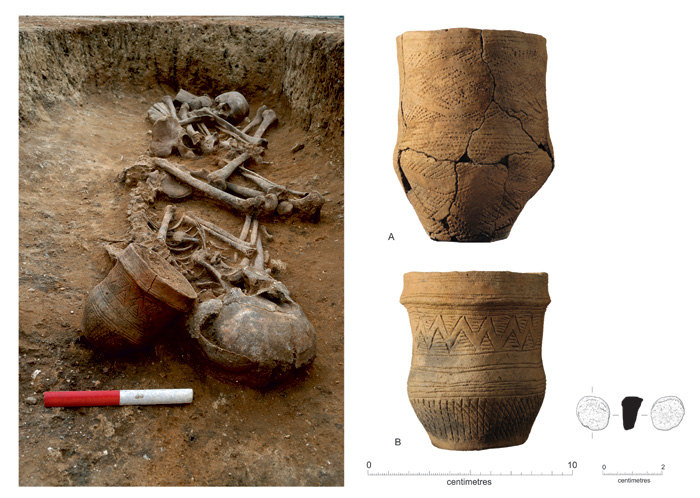 These intricately decorated Beaker vessels were found by the skulls of the two Bronze age individuals buried at Trumpington Meadows