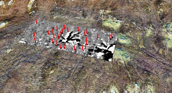 Results of geomagnetic survey of site XI, showing anomalies representing a stone circle, and evidence of the lightning strike in the middle