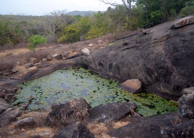 Mihintale-Vasammale-Pond-Anuradhapura-Sri Lanka-Archaeology.lk-Rasika Mutucumarana