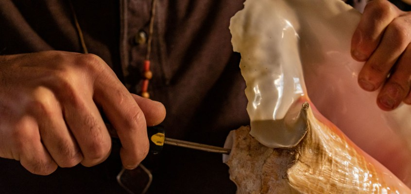 Making a Conch Shell Trumpet