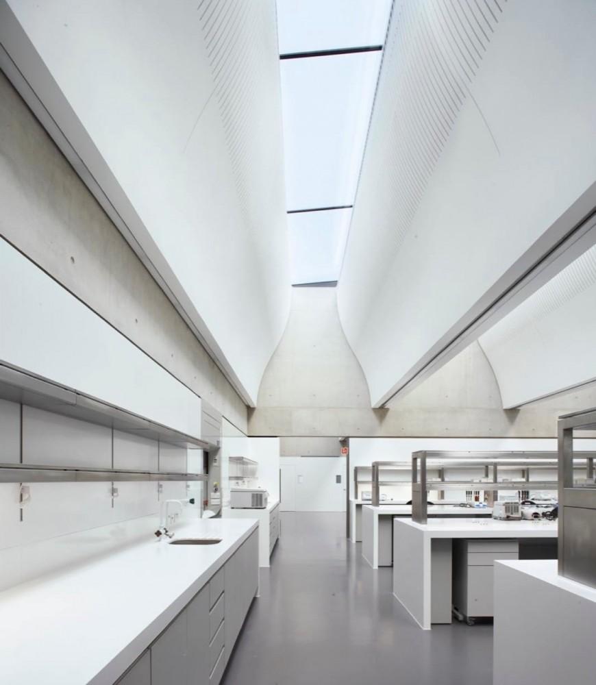 Sainsbury Laboratory / Stanton Williams © Hufton+Crow