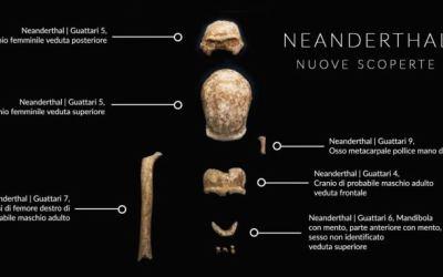 Grotta Guattari: a tu per tu con i Neandertal